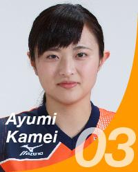 v1_03_kamei